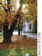 Купить «Санкт-Петербург, Елагин остров», фото № 51036, снято 15 октября 2005 г. (c) Александр Секретарев / Фотобанк Лори