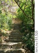 Лестница к морю (2007 год). Стоковое фото, фотограф Михаил Баевский / Фотобанк Лори