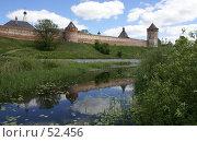Купить «Суздаль. Стены и башни (XVII в) Спасо-Евфимиева монастыря, отраженные в воде», фото № 52456, снято 11 июня 2007 г. (c) Julia Nelson / Фотобанк Лори