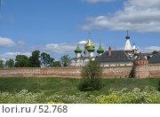 Купить «Суздаль. Спасо-Евфимиев монастырь», фото № 52768, снято 11 июня 2007 г. (c) Julia Nelson / Фотобанк Лори