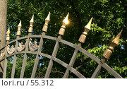 Купить «Решетка Летнего сада», фото № 55312, снято 4 июня 2007 г. (c) Александр Секретарев / Фотобанк Лори