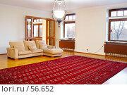 Купить «Интерьер. гостиная.», фото № 56652, снято 27 ноября 2006 г. (c) Ирина Мойсеева / Фотобанк Лори