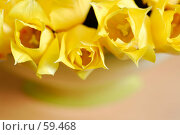Купить «Цветы в зеленой вазе», фото № 59468, снято 8 мая 2007 г. (c) Михаил Малышев / Фотобанк Лори
