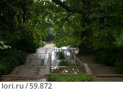 Купить «Никитский ботанический сад», фото № 59872, снято 4 июня 2007 г. (c) Алексей Судариков / Фотобанк Лори
