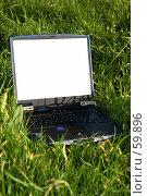 Купить «Ноутбук, лежащий на освещенной солнцем траве», фото № 59896, снято 22 мая 2006 г. (c) Harry / Фотобанк Лори