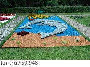 Купить «Клумба», фото № 59948, снято 5 июля 2007 г. (c) Дмитрий Карасев / Фотобанк Лори