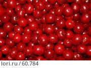 Купить «Вишневая симфония», фото № 60784, снято 11 июля 2007 г. (c) Михаил Николаев / Фотобанк Лори