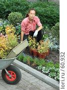 Купить «Девушка сажает цветы», фото № 60932, снято 4 июля 2007 г. (c) Георгий Марков / Фотобанк Лори