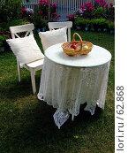Купить «Белый стол и стулья на лужайке», фото № 62868, снято 17 июля 2007 г. (c) Тим Казаков / Фотобанк Лори