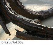 Купить «Железные лапы старинного якоря, отлежавшего много лет на дне моря. Болгария», фото № 64068, снято 2 мая 2004 г. (c) Harry / Фотобанк Лори