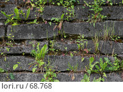 Купить «Старый фундамент», фото № 68768, снято 28 июня 2007 г. (c) Анатолий Теребенин / Фотобанк Лори