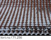 Купить «Черепичная крыша», эксклюзивное фото № 71256, снято 19 августа 2018 г. (c) Михаил Карташов / Фотобанк Лори