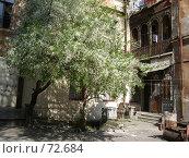 Купить «Украина, Одесса, старый дворик, цветущая вишня», фото № 72684, снято 1 мая 2005 г. (c) Галина  Горбунова / Фотобанк Лори