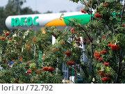Купить «Автозаправочная станция ЮКОС», фото № 72792, снято 18 августа 2007 г. (c) Юрий Синицын / Фотобанк Лори