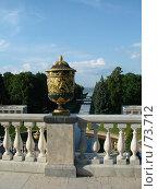 Ваза. Вид на Петергофский канал (2007 год). Редакционное фото, фотограф Надежда Климовских / Фотобанк Лори