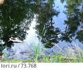 Отражения в лесном пруду. Стоковое фото, фотограф Людмила Жукова / Фотобанк Лори