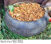 Купить «Чугунок с сухофруктами», фото № 82592, снято 18 августа 2007 г. (c) Ivan I. Karpovich / Фотобанк Лори