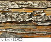 Купить «Сосновое бревно», фото № 83620, снято 18 июня 2006 г. (c) Олег Безручко / Фотобанк Лори