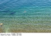 Купить «Прозрачная вода, вид сверху. Камни и отдыхающие», фото № 88516, снято 1 сентября 2007 г. (c) Tamara Kulikova / Фотобанк Лори