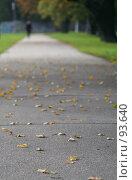 Купить «Асфальтовая дорога, усыпанная листьями, и уходящая в даль фигура», фото № 93640, снято 23 сентября 2007 г. (c) Елена Мельникова / Фотобанк Лори