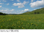 Купить «Одуванчиковое поле на фоне Ильменских гор весной», фото № 98416, снято 27 мая 2007 г. (c) Григорий Погребняк / Фотобанк Лори