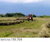 Купить «Пора сенокосная», фото № 99764, снято 28 июля 2007 г. (c) Шаврин Виктор Михайлович / Фотобанк Лори