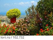 Купить «Цветочная клумба на фоне средиземноморского пейзажа», фото № 102732, снято 23 мая 2018 г. (c) Знаменский Олег / Фотобанк Лори