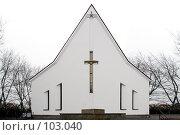 Купить «Церковь Иисуса Христа Спасителя.Челябинск», фото № 103040, снято 6 декабря 2019 г. (c) Михаил Мандрыгин / Фотобанк Лори