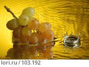 Купить «Виноград», фото № 103192, снято 14 ноября 2018 г. (c) Иван Сазыкин / Фотобанк Лори