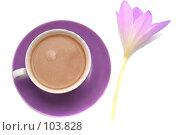 Купить «Сиреневый цветок и чашка с кофе изолированы на белом фоне», фото № 103828, снято 17 августа 2018 г. (c) Останина Екатерина / Фотобанк Лори