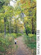 Купить «Девочка бегущая по тропинке среди больших осенних деревьев», фото № 104188, снято 22 апреля 2018 г. (c) Круглов Олег / Фотобанк Лори