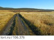 Купить «Дорога к лесу», фото № 106376, снято 20 октября 2007 г. (c) Валерий Александрович / Фотобанк Лори