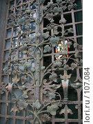Купить «Кованая решетка с растительным орнаментом на входе в кладбищенский склеп», фото № 107084, снято 26 февраля 2006 г. (c) Harry / Фотобанк Лори