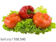 Купить «Овощной натюрморт», фото № 108540, снято 5 мая 2007 г. (c) Валентин Мосичев / Фотобанк Лори