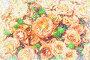 Рисунок - оранжевые розы, фото № 108780, снято 25 августа 2007 г. (c) Ольга Шаран / Фотобанк Лори