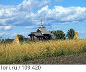 Купить «Кижи, Церковь Воскрешения Лазаря», фото № 109420, снято 19 августа 2007 г. (c) Ярослава Синицына / Фотобанк Лори