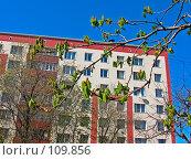Купить «Весенние ветки каштана на фоне стены современного здания», фото № 109856, снято 6 мая 2007 г. (c) Маргарита Лир / Фотобанк Лори