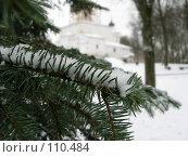 Купить «Хвойная ветка под снегом на фоне церкви», фото № 110484, снято 18 ноября 2018 г. (c) Олег Крутов / Фотобанк Лори