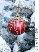Купить «Новогодний красный шар со стразами на заснеженной ветке ели», фото № 114596, снято 12 ноября 2007 г. (c) Кардаполова Наталья / Фотобанк Лори