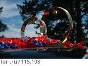 Свадебные кольца. Стоковое фото, фотограф Чумилин Леонид Александрович / Фотобанк Лори