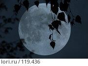 Купить «Ночь», фото № 119436, снято 9 октября 2007 г. (c) Юрий Соколов / Фотобанк Лори