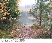 Купить «Тропинка выходящая на берег лесного озера. осень», фото № 120396, снято 20 октября 2007 г. (c) Иван / Фотобанк Лори