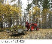 Осенняя уборка (2007 год). Редакционное фото, фотограф Любовь Веселова / Фотобанк Лори