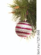 Купить «Новогодний шар на сосновой ветке», фото № 121668, снято 31 октября 2007 г. (c) Останина Екатерина / Фотобанк Лори