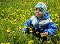 Мальчик и цветы одуванчика, фото № 122820, снято 22 мая 2004 г. (c) Losevsky Pavel / Фотобанк Лори