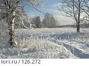 Купить «Снежный зимний пейзаж», фото № 126272, снято 20 января 2018 г. (c) Игорь Соколов / Фотобанк Лори