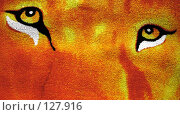Купить «Взгляд тигра», фото № 127916, снято 24 ноября 2007 г. (c) Анатолий Теребенин / Фотобанк Лори