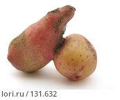Купить «Картошка», фото № 131632, снято 8 июля 2007 г. (c) Иван / Фотобанк Лори