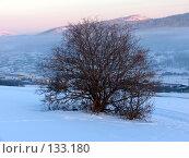 Сибирская зима. Стоковое фото, фотограф A.Козырева / Фотобанк Лори