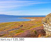 Купить «Берег Баренцево моря», фото № 135380, снято 22 сентября 2007 г. (c) Мирзоянц Андрей / Фотобанк Лори